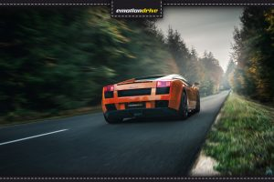Lamborghini Gallardo Fahrt im Wald